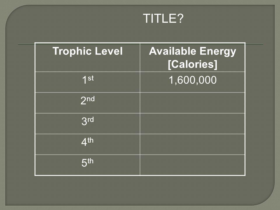 Available Energy [Calories]
